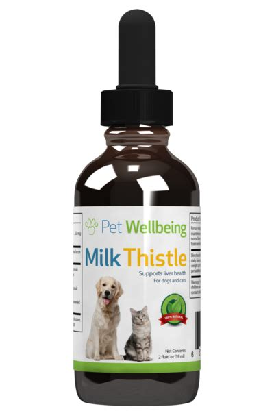 is milk for dogs milk thistle for liver disease petwellbeing