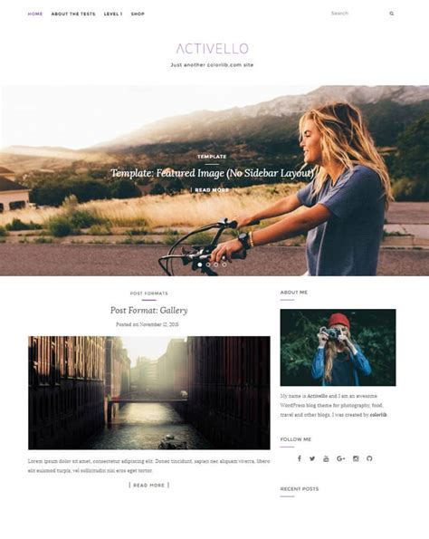 15 basic simple wordpress themes free 2018 dessign