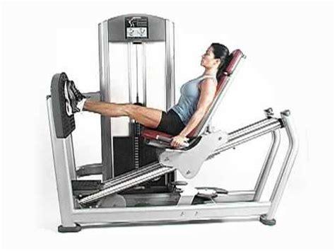 seated leg press machine workout fitness signature seated leg press