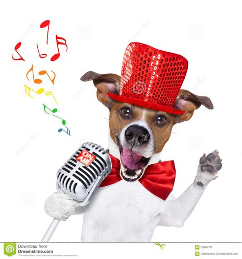 cing with dogs singing with microphone stock image image 65905731