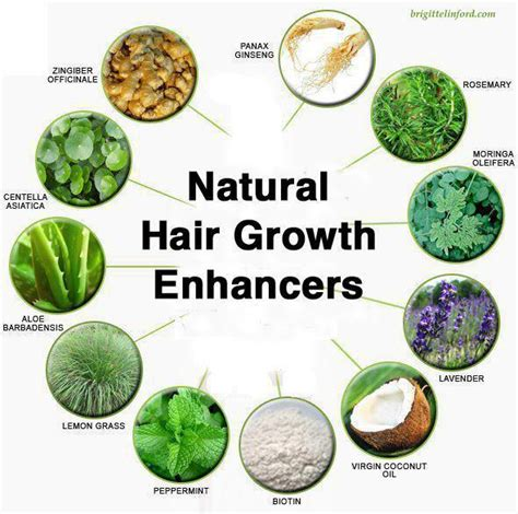 healthy fast hair growth foods that give your hair health how to make hair