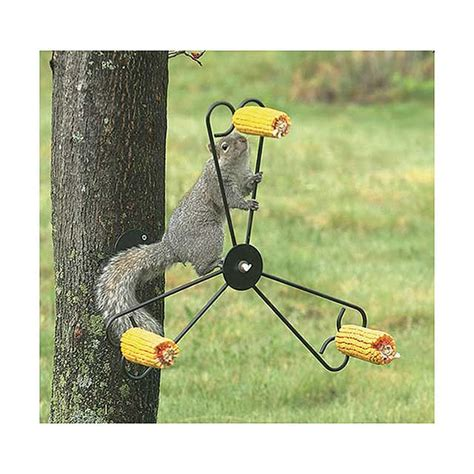 Spinning Squirrel Feeder spinning squirrel feeder rotates food by whirley at what