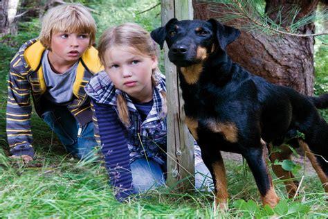 puppy patrol puppy patrol 13 x 23