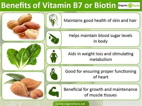 7 facts about biotin and hair growth top 8 benefits of vitamin b7 or biotin organic facts