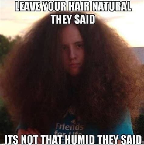 Natural Beauty Meme - leave your hair natural they said its not that humid they