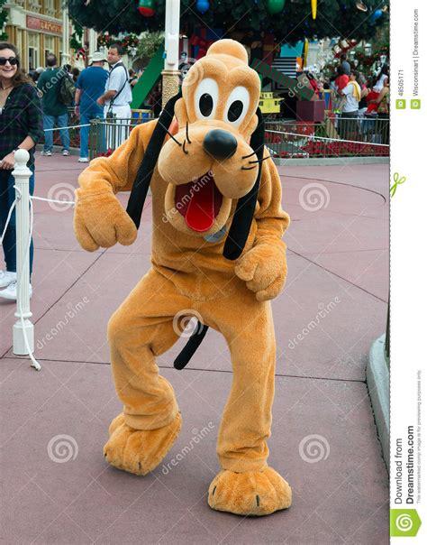 dogs at disney world disney world pluto character editorial photo image 48505171