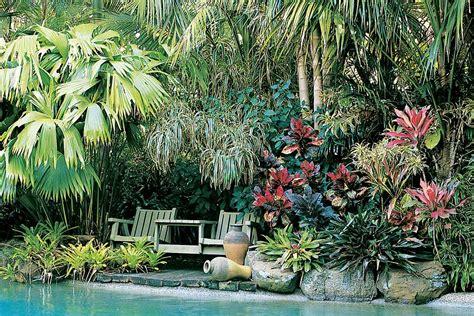 tropical planting scheme what to plant around a pool new zealand handyman magazine