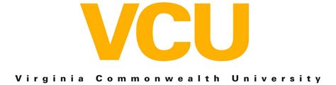 Vcu Mba Electives by Top Big Data Analytics Degree Masters Programs