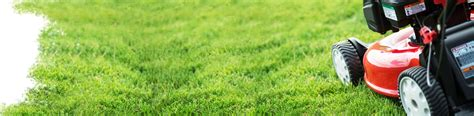 manutenzione giardini bologna manutenzione giardini assistenza giardini bologna modena