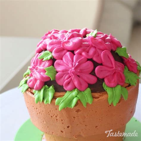 Sweet In Pot Bouquet flower pot cake recipe edible flowers flowers and