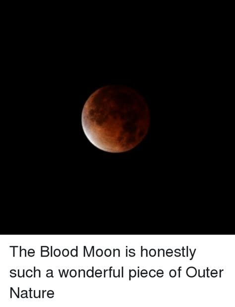 Blood Moon Meme - 45 funny blood moon memes of 2016 on sizzle