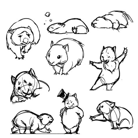 wombat tattoo designs wombats by ancalinar on deviantart