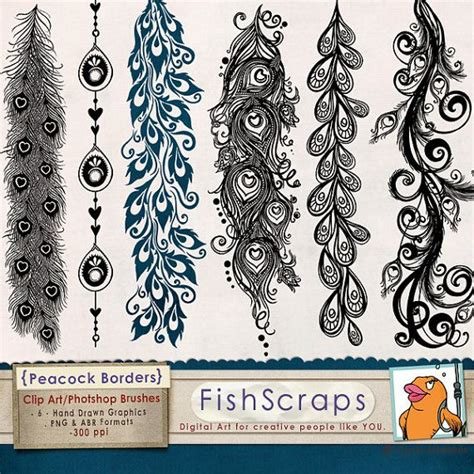 decorative border in photoshop clip art borders peacock flourish png photoshop