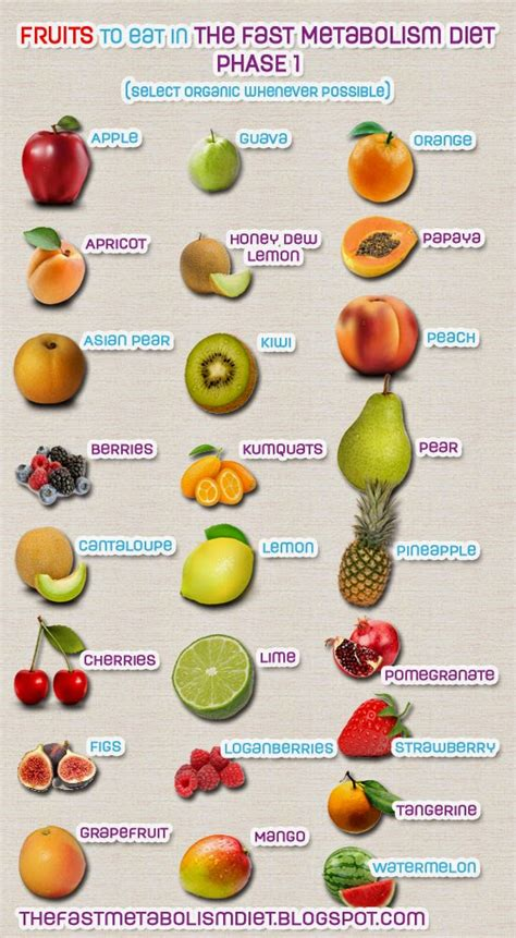 a fruit diet the fast metabolism diet the fast metabolism diet phase 1
