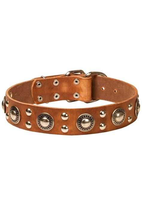 cool collars cool collar fashion decorations large