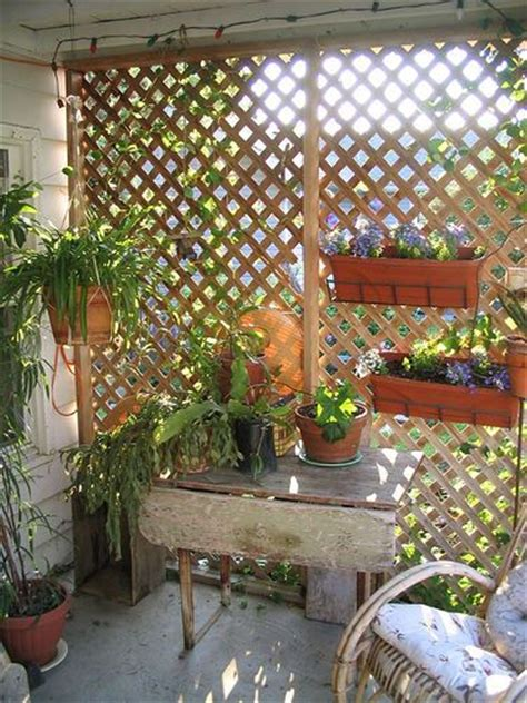 Trellis For Patio by Garden Trellis For Condo Balcony Privacy Garden