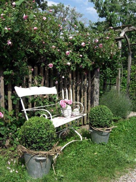 immergrüne pflanzen als sichtschutz 841 die besten 25 palisaden ideen auf gartenset
