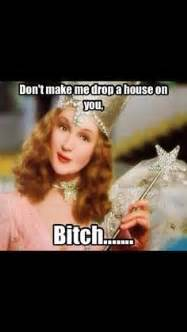 Wizard Of Oz Meme - unicorns conspiracy theories and confederate flags oh