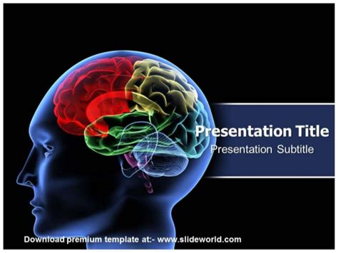 free brain powerpoint templates neurology powerpoint template slideworld