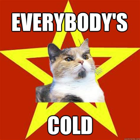 Cold Meme - everybody s cold cat meme cat planet cat planet