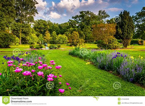Garden Baltimore by Colorful Flowers In A Garden At Druid Hill Park In