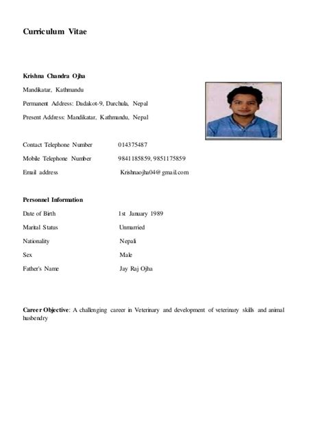 How To Make A Resume For A Job Example by My Biodata