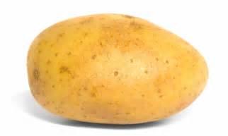 Innate potato heads for market but gm watchdogs chip away at simplot