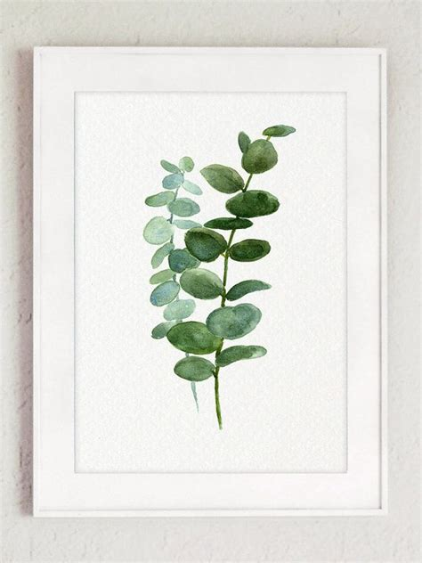printable eucalyptus leaves silver dollar eucalyptus leaves green blue leaf watercolor