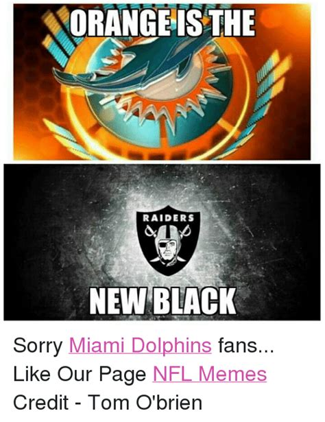 Funny Miami Dolphins Memes - funny miami dolphins memes of 2016 on sizzle dolphin