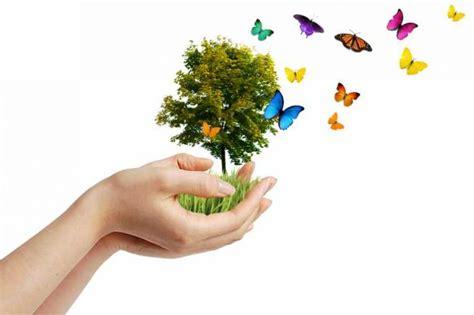 membuat puisi yang bertema keindahan alam kumpulan contoh puisi bertema keindahan alam dan
