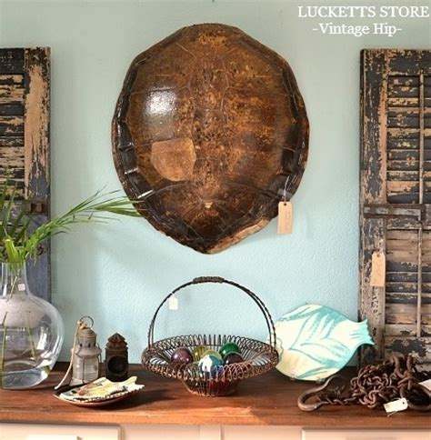shell home decor decorated turtle shell www pixshark com images