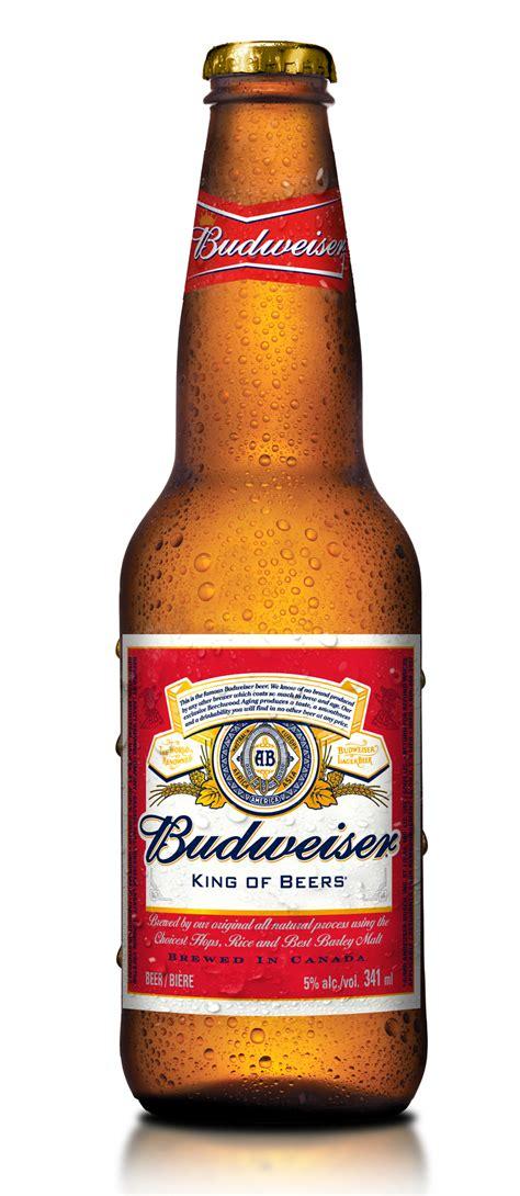 budweiser beer budweiser bottle1 187 strategy