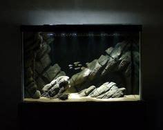 aquascape bubble light 1000 images about aqua scape aquarium bubble on pinterest aquascaping aquarium