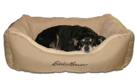 eddie bauer dog bed eddie bauer ripstop outer shell pet bolster bed groupon