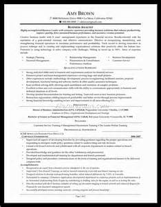 Business Analytics Resume Sample business analytics resume sample