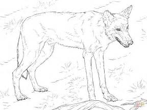 wolf coloring pages wolf coloring page free printable coloring pages