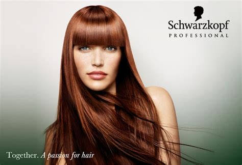 how to mix schwarzkopf hair color schwarzkopf color hair caigns pinterest stylists
