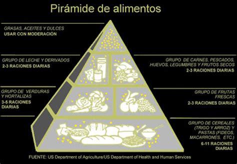 cadena alimenticia pirámide trofica tecnovikings 161 come sano y variado