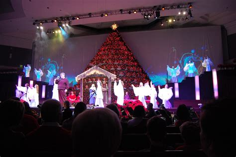shandon singing christmas tree dustyfile com