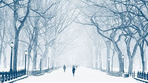 winter solstice wellness self care suggestions for the