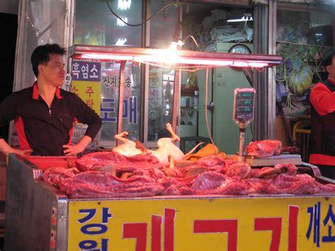 do koreans eat korean eat dogs alive quotes