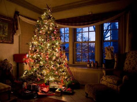 putting christmas lights on tree how to put lights on tree nebraska best template collection