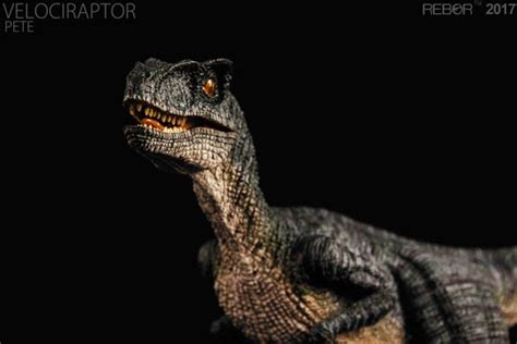 Velociraptor Rebor a review of the rebor quot pete quot velociraptor replica