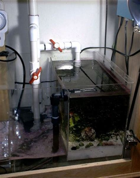 Refugium Plumbing by What Is A Sump
