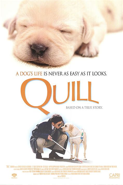 quills movie subtitles quill the life of a guide dog films we like