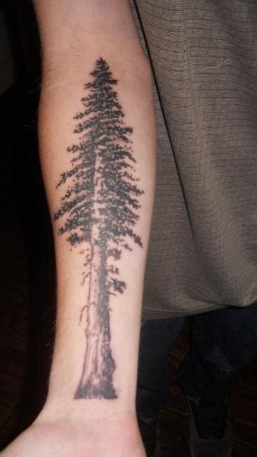 tree tattoo forearm forearm tree designs ideas and meaning tattoos