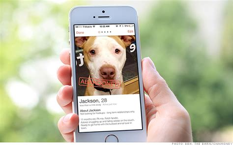 tinder for dogs 15 tinder profile pics that need to stop memes