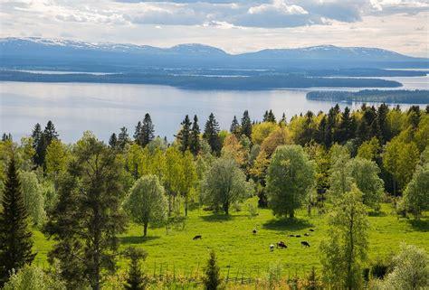 garden travel guide to sweden