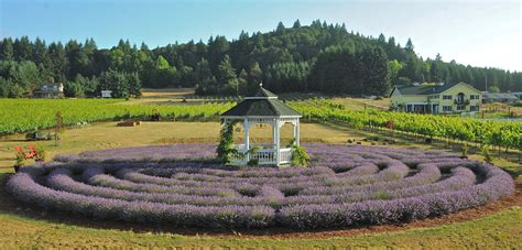lavender labyrinth michigan lavender festival 2014 places to go 171 bombay outdoors