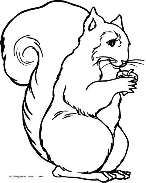 imagenes motivadoras para imprimir dibujos para colorear ardillas para pintar